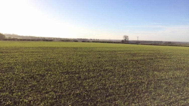 8.99 Acres, High Hameringham, Horncastle